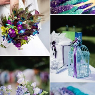 Violet And Teal Blue Peacock Themed Wedding Color Ideas