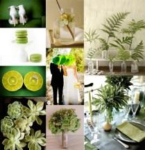 Green Weddings The Latest Trend Taking Over Modern Weddings