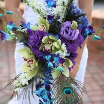101 Best Peacock Theme Parties Images On Emasscraft Org