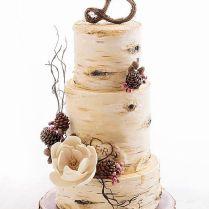 211 Best Cakes