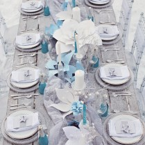 Awesome Blue Silver And White Wedding Pictures