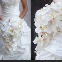 Orchid Flower For Wedding White Orchid Wedding Flowers The Wedding