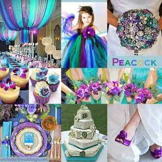 Peacock Colors Wedding