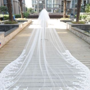 White Ivory Sequins Lace 3 4 Metres Wedding Veils Cathedral Length