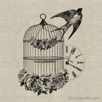 Bird Cage Symbolising Freedom And Faith
