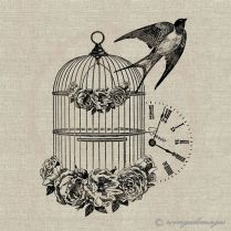 French Vintage Bird Cage Swallow Instant Download Digital Image