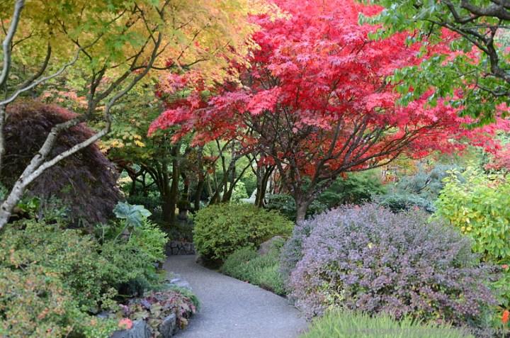 The Butchart Gardens Japanese Garden Canada