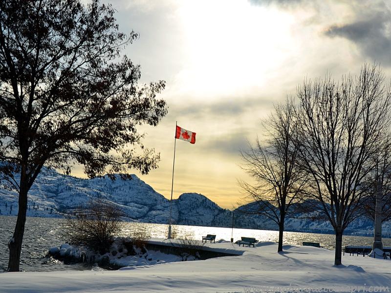 blogs sobre o Canadá