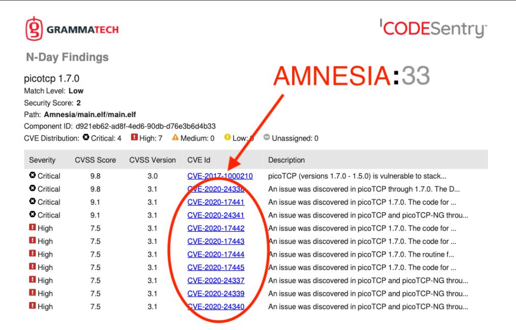 Amnesia33-picoTCP circled by Grammatech