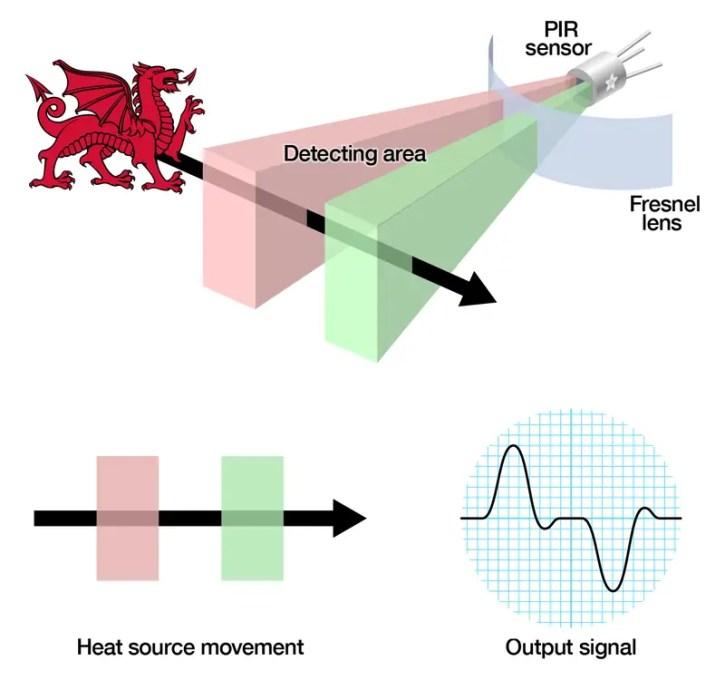 pir-diagram PIR Sensor Interfacing with PIC16F877A