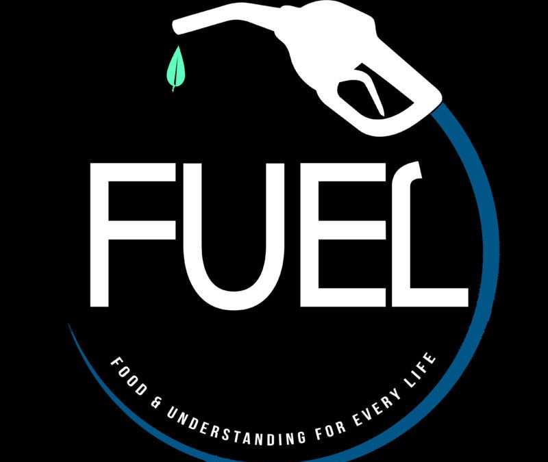 PROJECTS: Fuel Logo