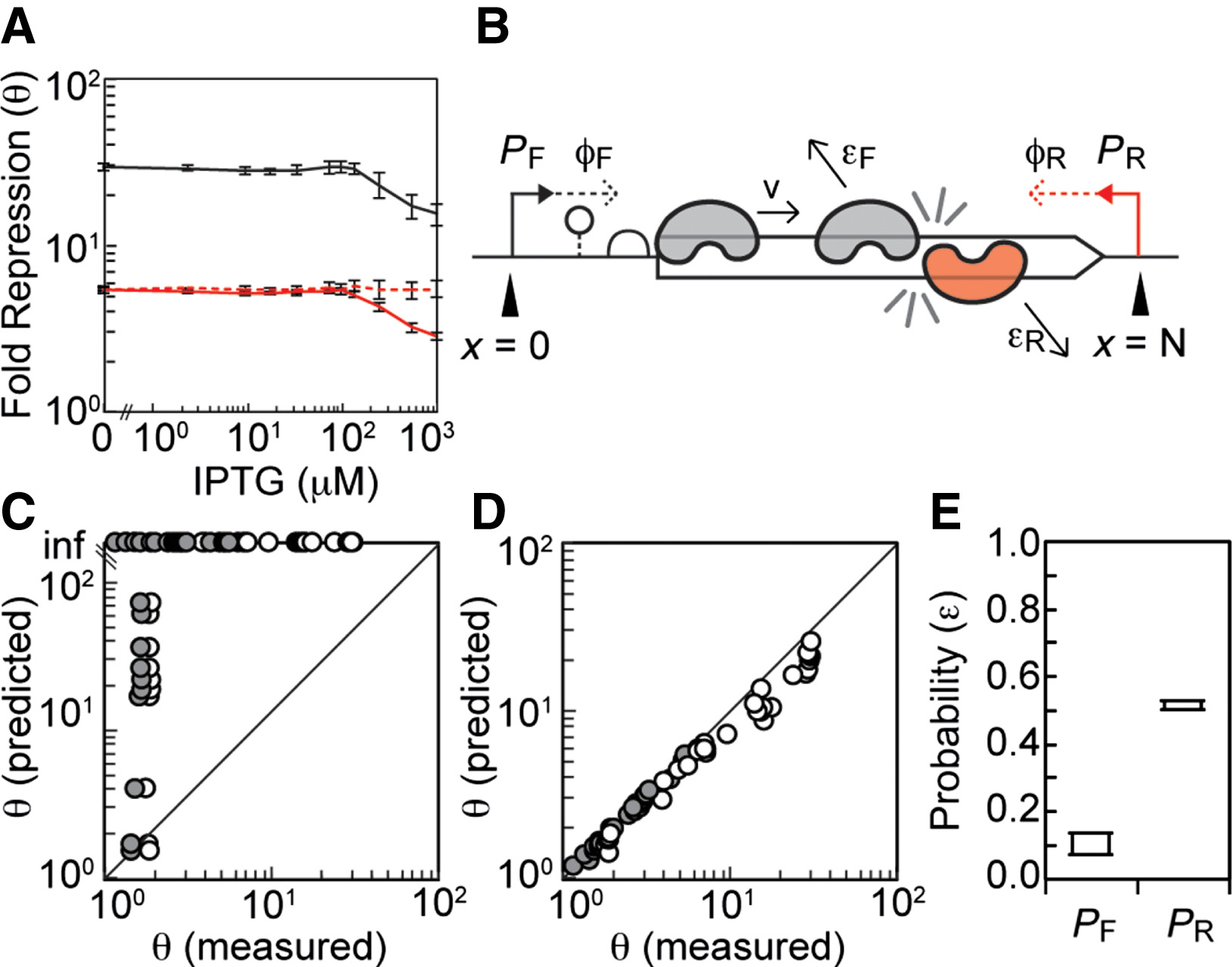 Antisense Transcription As A Tool To Tune Gene Expression