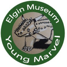 Elgin Museum - Young Marvels