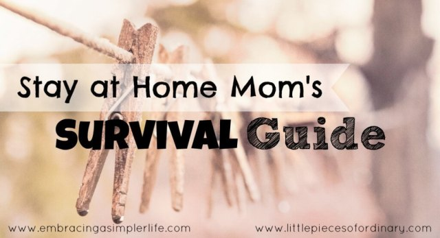 stay at home moms survival guide FB