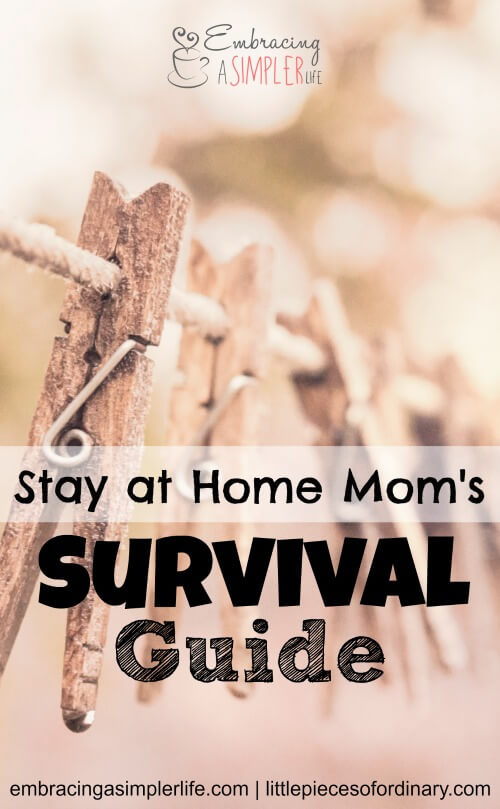 stay at home moms survival guide