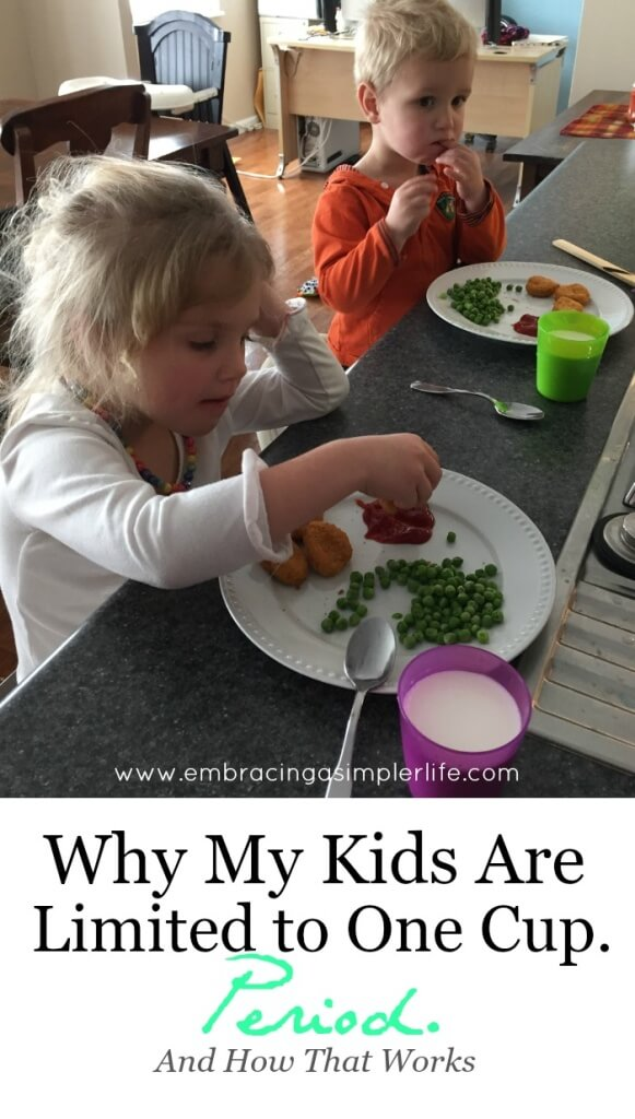 why my kids are limited to one cup