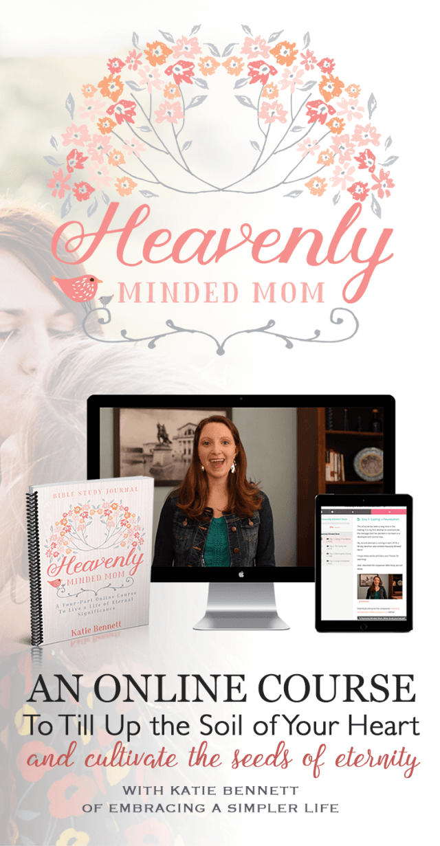 Heavenly Minded Mom