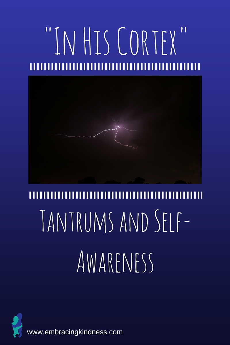 """""""In His Cortex"""": Tantrums and Self-Awareness"""