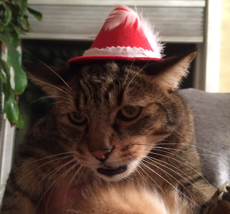 Pete wearing his party hat!