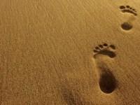 foot steps