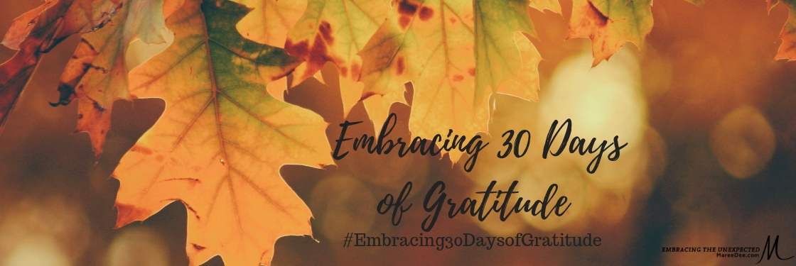 Embracing 30 Days of Gratitude