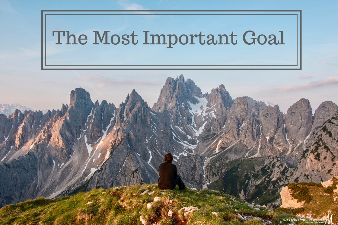 The Most Important Goal