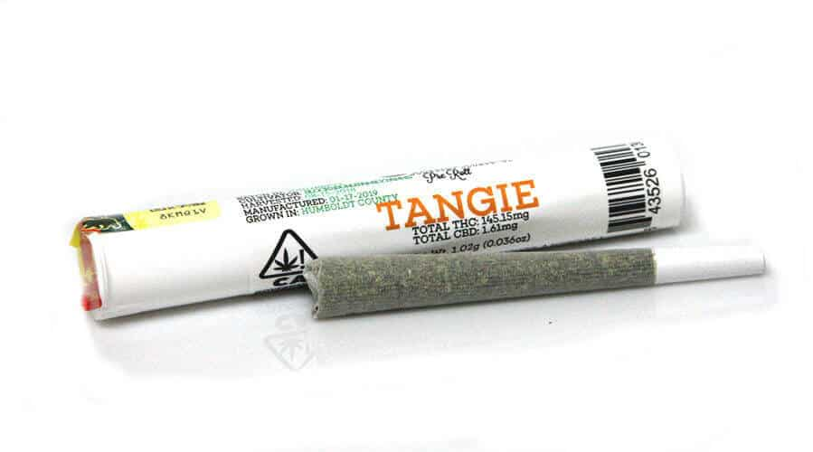 Tangie Joints! Buy Tangie joints from Emerald Family Farms