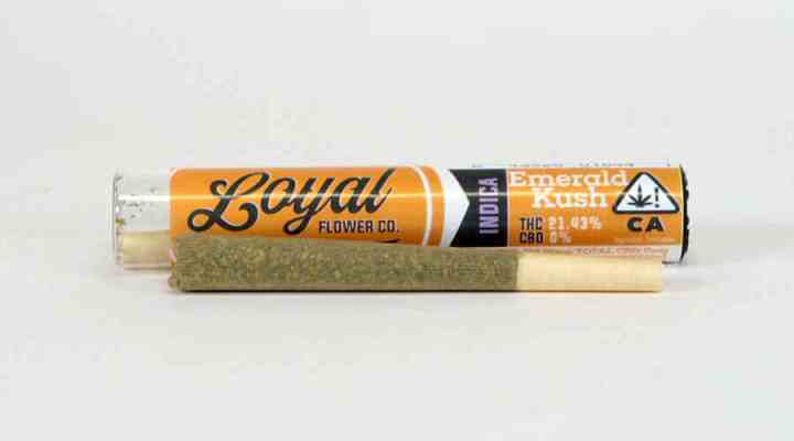 Emerald Kush joints strain