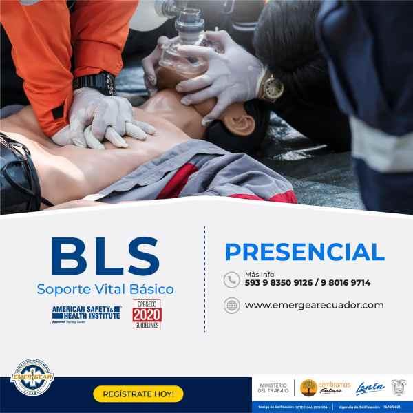 BLS_p-01-min