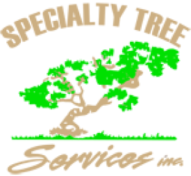 specialtytree