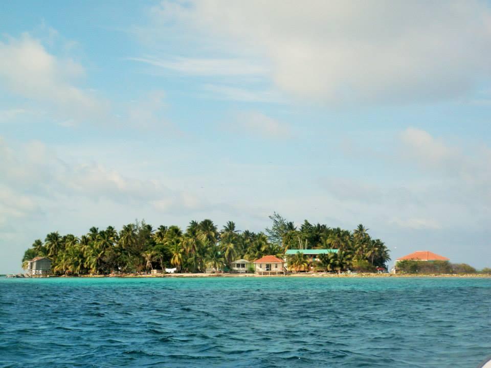 Island near Thatch Caye.