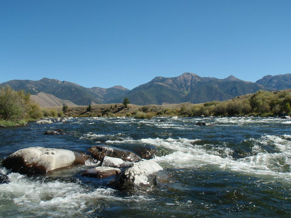 Madison River. West Yellowstone, MT