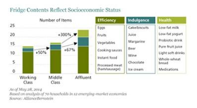 Emerging Market Skeptic - Fridge Contents Reflect Socioeconomic Status
