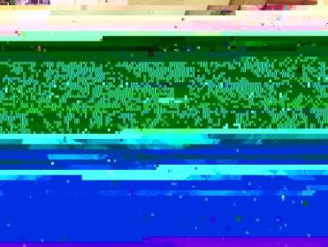 Alf & Slyvie's 55th Wedding Anniversary