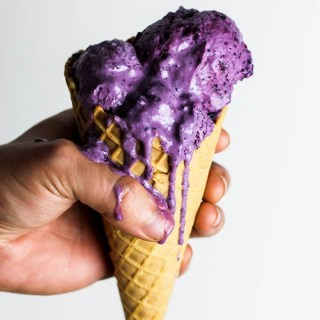 Blueberry Vegan Frozen Yogurt