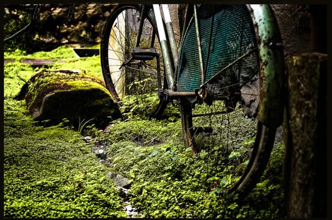16052009-bicicleta