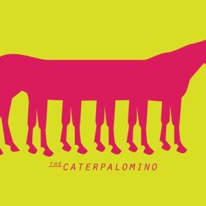 Caterpalomino 01