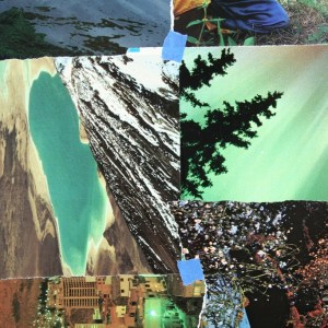 365 Collages 89