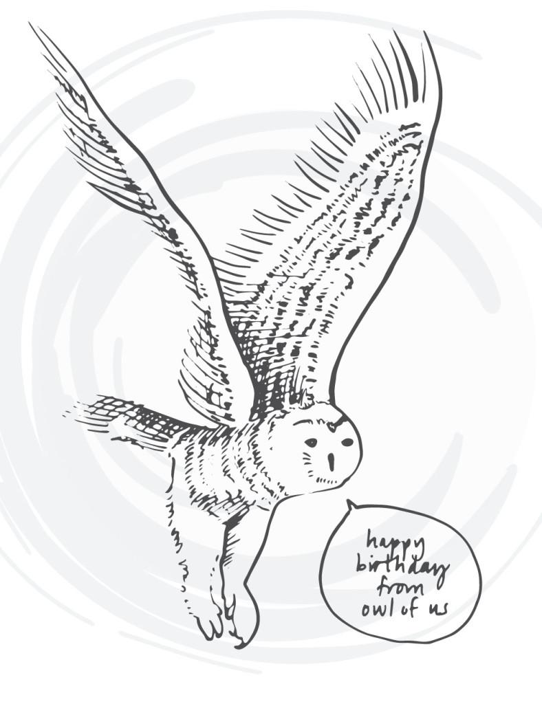 bird-cards-web-07