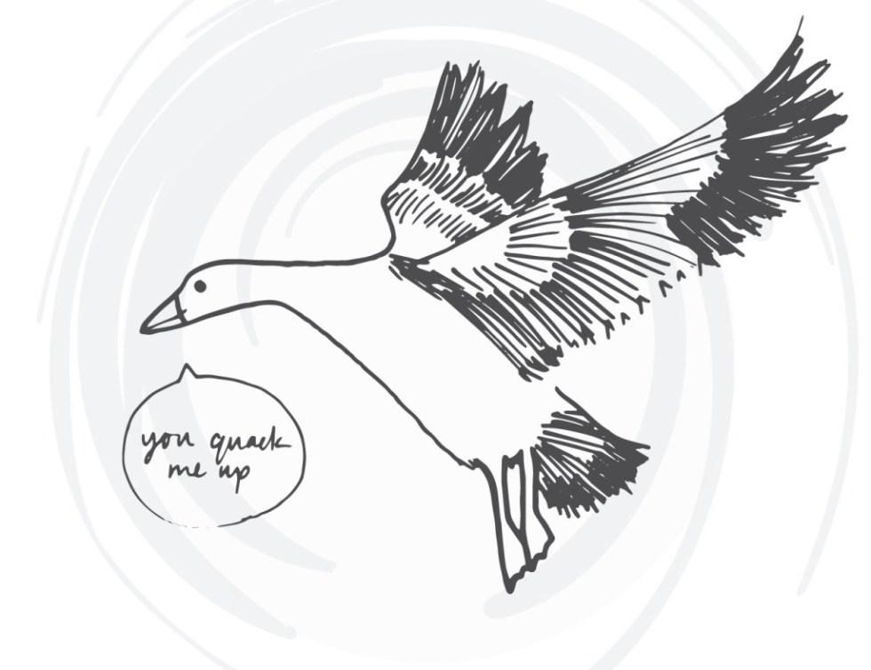 bird-cards-web-10