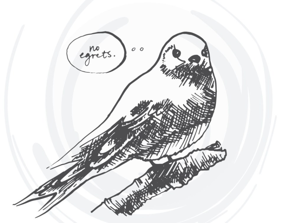 bird-cards-web-12
