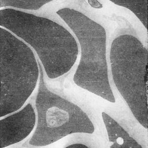 Suminagashi Paper Marbling Web 30