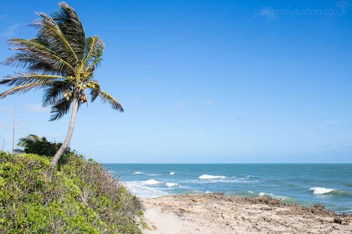 Things to do in Hutchinson Island Florida