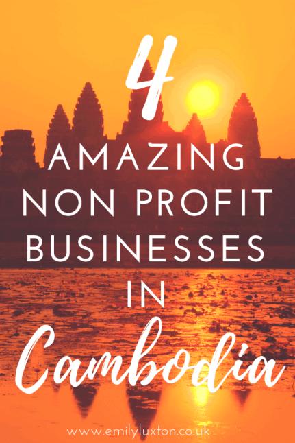 Non Profit Businesses to Visit in Cambodia