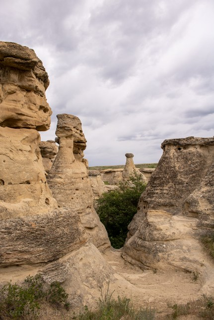 what to see on an alberta road trip
