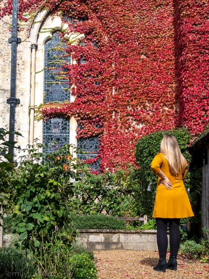 Girl in yellow dress in front of red ivy