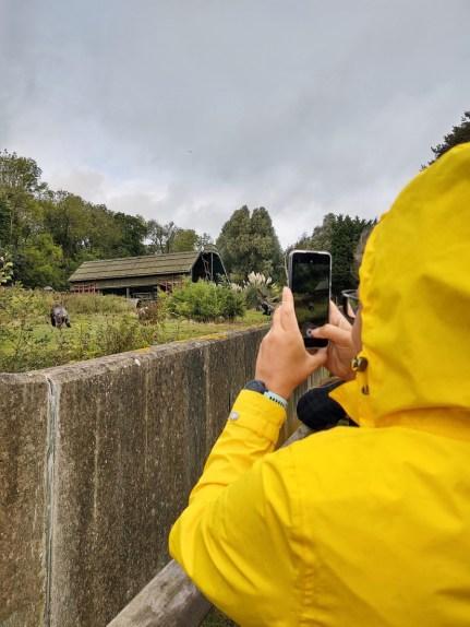 Girl Taking Photo on phone in Yellow Raincoat