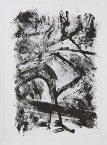 """No. 12, Monotype on Canson Watercolor Paper, 15"""" x 10"""", 2010"""