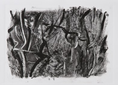 """No. 16, Monotype on Rives BFK, 15"""" x 22"""", 2010"""