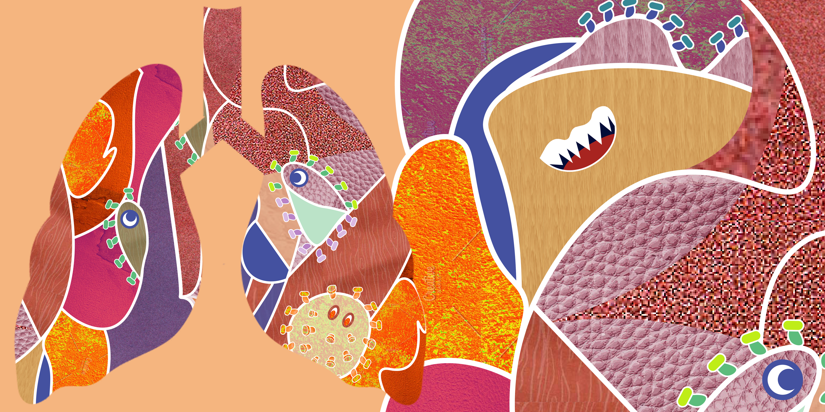 Coronavirus-inspired illustration with warm palette and cartoon styled illustrations with lung outline by Emma Blake Morsi
